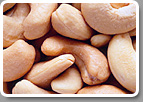 Eat Cashew Processors